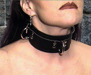 463Leather Lined D-Ring Collar